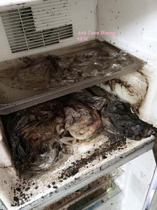 Trở lại phòng trọ sau Tết, chàng trai sốc nặng khi mở tủ lạnh ra - Ảnh 8.