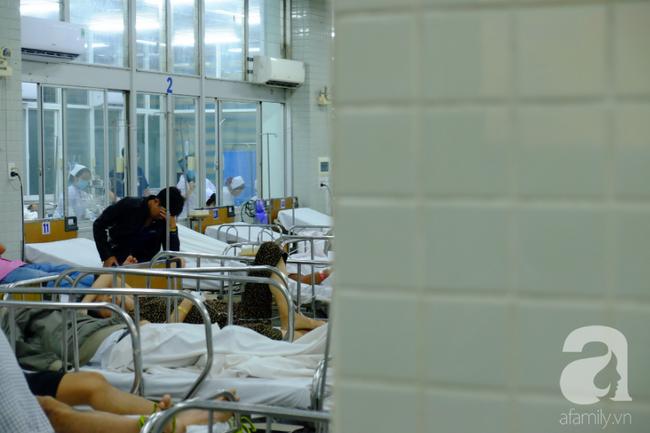 Hơn 2.700 heo vàng được sinh ra, 80 người chết tại bệnh viện ở TP.HCM dịp Tết Nguyên Đán 2019 - Ảnh 2.