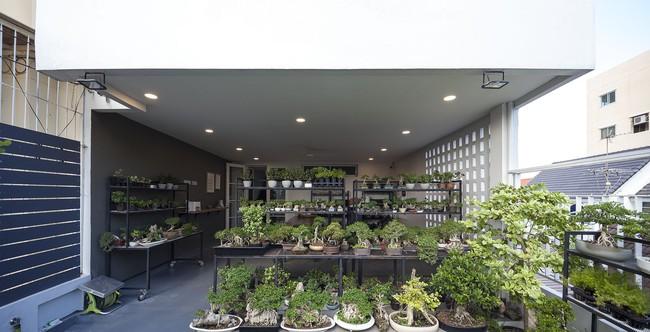 Sau 15 năm bỏ hoang, ngôi nhà 300m² được cặp vợ chồng trẻ hồi sinh cực hiện đại lại có vườn bonsai đáng mơ ước ở ban công - Ảnh 12.