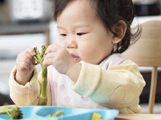 Đây chính là danh sách những loại thực phẩm cực tốt cho bé chuyển sang ăn dặm sau khi đã cai sữa mẹ - Ảnh 2.