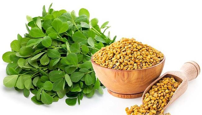 Lợi ích sức khỏe tuyệt vời của cỏ linh lăng, từ thúc đẩy giảm cân đến cải thiện quá trình tiêu hóa - Ảnh 6.