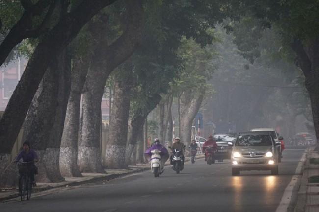 Cảnh báo bệnh thường gặp khi thời tiết nồm ẩm kéo dài trong mùa xuân - Ảnh 1.