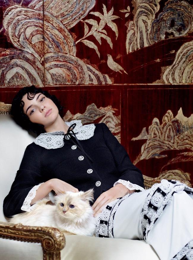"""Chẳng phải ai khác, mèo Choupette mới chính là """"nàng thơ"""" nổi tiếng nhất của Karl Lagerfeld với vẻ đẹp vừa sang chảnh lại ngọt ngào - Ảnh 4."""