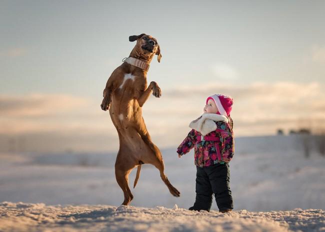 Bộ ảnh đẹp đến nao lòng của các bé chụp cùng thú cưng khổng lồ khiến ai nấy đều phải ngẩn ngơ, trầm trồ - Ảnh 2.