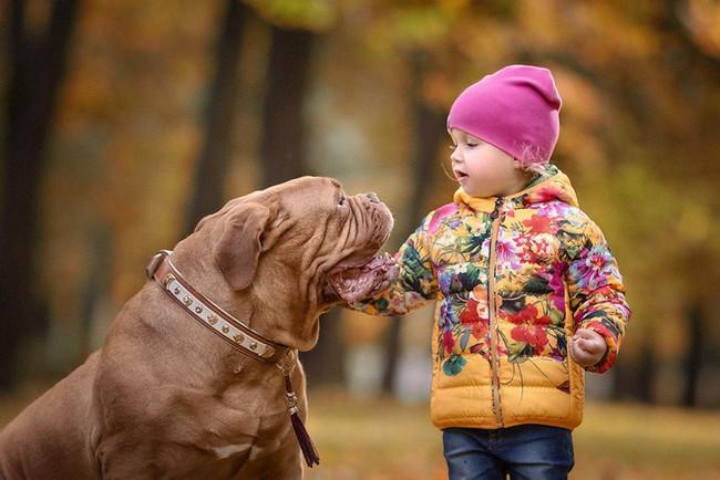 Bộ ảnh đẹp đến nao lòng của các bé chụp cùng thú cưng khổng lồ khiến ai nấy đều phải ngẩn ngơ, trầm trồ - Ảnh 4.