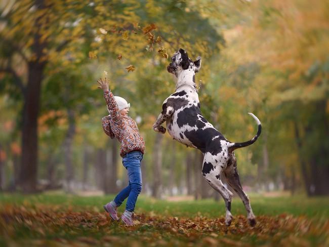 Bộ ảnh đẹp đến nao lòng của các bé chụp cùng thú cưng khổng lồ khiến ai nấy đều phải ngẩn ngơ, trầm trồ - Ảnh 6.
