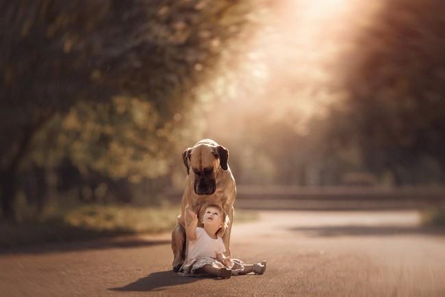 Bộ ảnh đẹp đến nao lòng của các bé chụp cùng thú cưng khổng lồ khiến ai nấy đều phải ngẩn ngơ, trầm trồ - Ảnh 12.