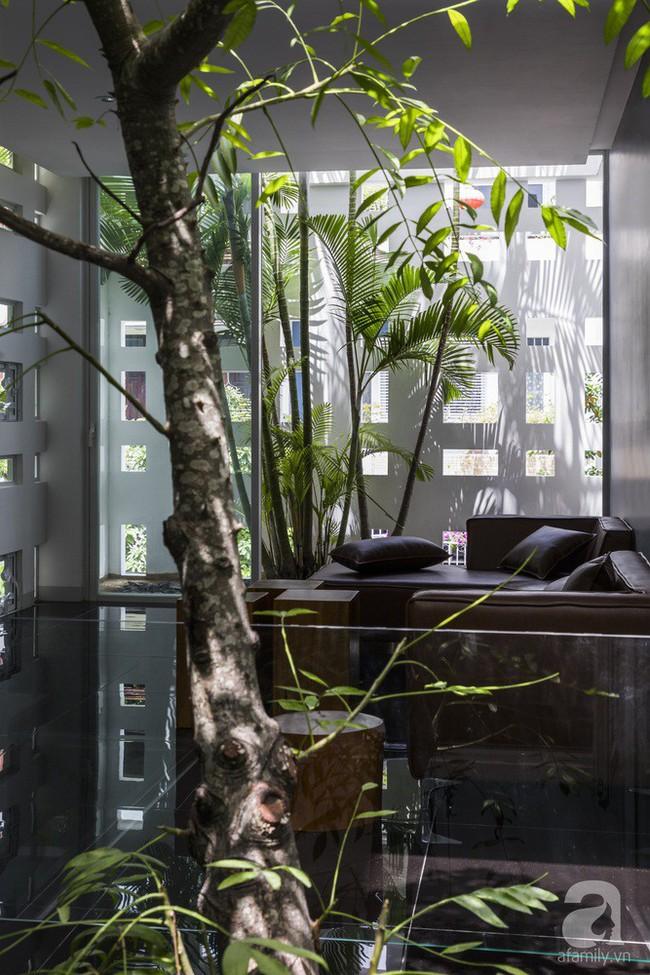 Nhờ thiết kế 300 ô cửa sổ, ngôi nhà hướng Tây ở Nha Trang luôn ngập tràn ánh sáng và gió mát - Ảnh 9.