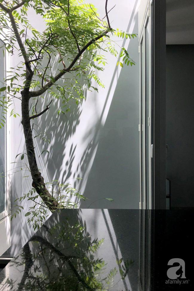 Nhờ thiết kế 300 ô cửa sổ, ngôi nhà hướng Tây ở Nha Trang luôn ngập tràn ánh sáng và gió mát - Ảnh 4.