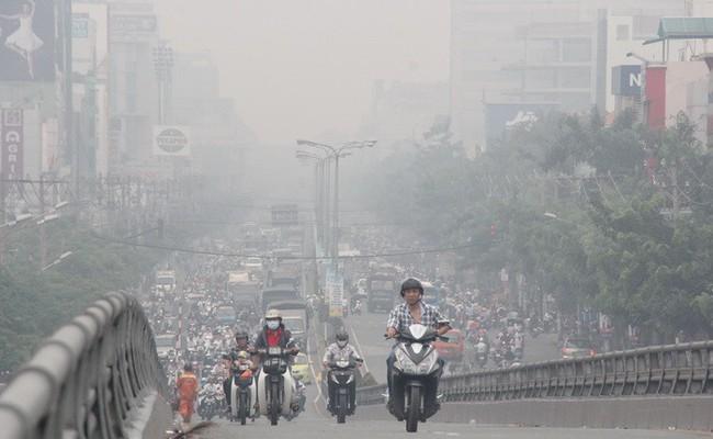 Nguy hiểm khi bụi mịn đi thẳng vào phổi, phải làm gì để làm sạch phổi ngay hôm nay? - Ảnh 1.