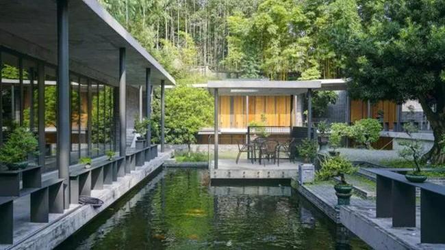 Cuộc sống an yên của người đàn ông độc thân trong ngôi nhà ngoại ô rộng 1000m² với thú vui uống trà, nuôi cá - Ảnh 23.