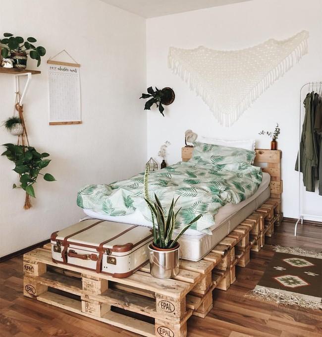 Giường pallet, loại giường ngon - bổ - rẻ, góp mặt trong không gian nào cũng xinh xắn, hài hòa - Ảnh 6.