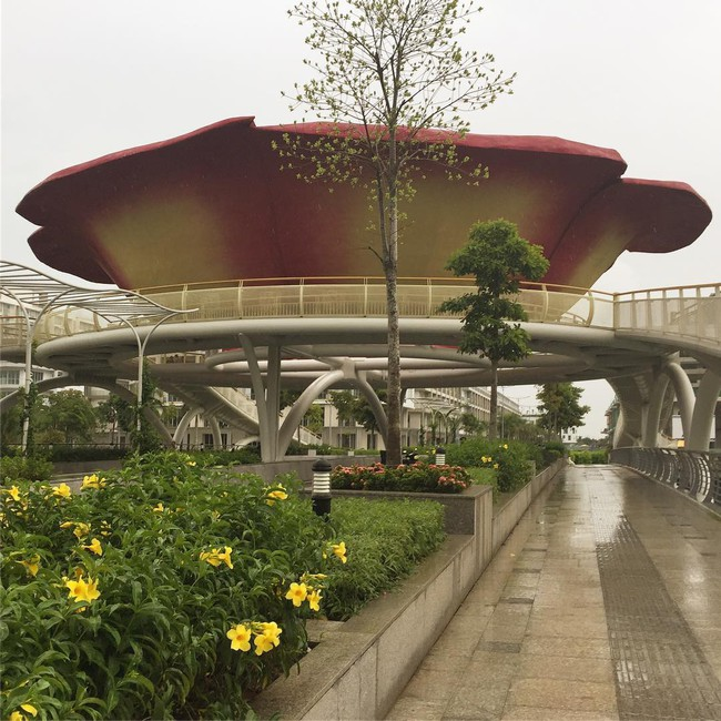 6 công viên cực đẹp, nhiều góc sống ảo mà bạn chưa biết ở Sài Gòn thì thật đáng tiếc - Ảnh 15.