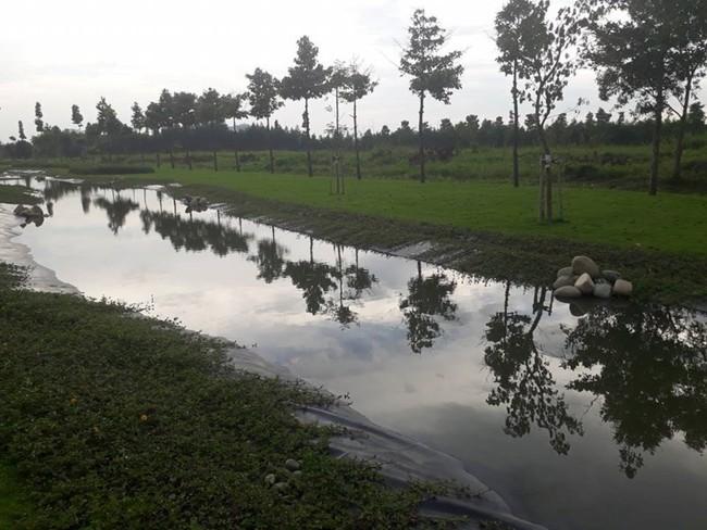 6 công viên cực đẹp, nhiều góc sống ảo mà bạn chưa biết ở Sài Gòn thì thật đáng tiếc - Ảnh 24.