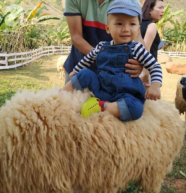 Gia đình 9X có con nhỏ mách cách du lịch Mộc Châu 2 ngày cuối tuần, chỉ 3 triệu đồng vẫn ăn ngon, chơi đã - Ảnh 6.