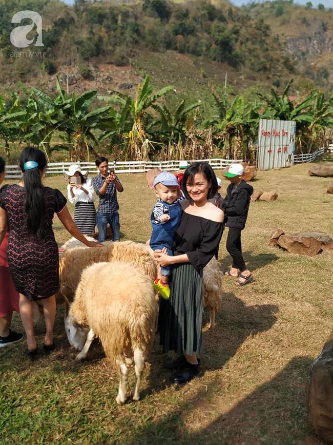 Gia đình 9X có con nhỏ mách cách du lịch Mộc Châu 2 ngày cuối tuần, chỉ 3 triệu đồng vẫn ăn ngon, chơi đã - Ảnh 7.