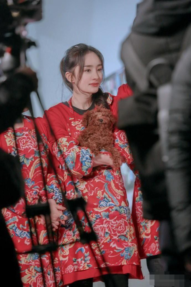 Lụa đẹp nhờ người: Dương Mịch đánh bật Trương Hinh Dư, nhận cơn mưa lời khen khi diện chăn con công huyền thoại - Ảnh 2.