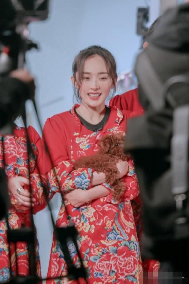 Lụa đẹp nhờ người: Dương Mịch đánh bật Trương Hinh Dư, nhận cơn mưa lời khen khi diện chăn con công huyền thoại - Ảnh 3.