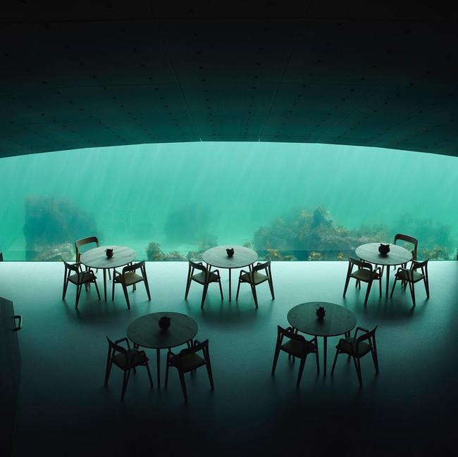 Nhà hàng dưới nước đầu tiên tại châu Âu gây sốt trên toàn thế giới: Đầu tháng 4 mới khai trương nhưng đã kín lịch đặt chỗ đến tận tháng 9 - Ảnh 12.