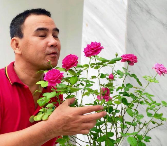 Vườn hồng với đủ loại hồng cổ, hồng ngoại khoe sắc trong biệt thự của MC Quyền Linh - Ảnh 5.