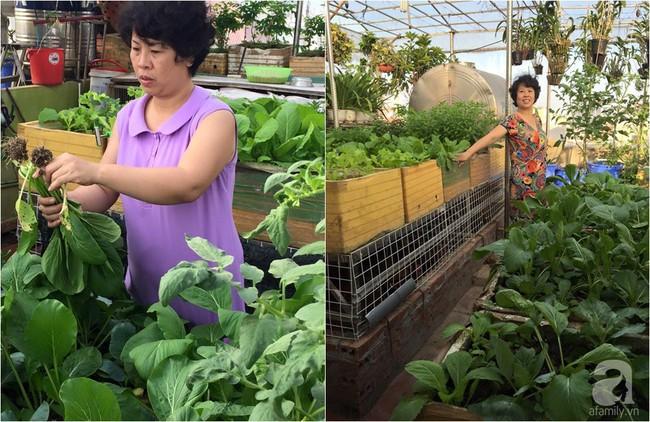 Khu vườn đủ loại rau xanh, trái ngọt không khác gì một trang trại thu nhỏ trên sân thượng của bà mẹ hai con ở Hải Phòng - Ảnh 2.