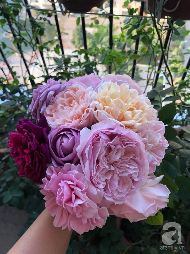 Ban công chỉ vỏn vẻn 5m² nhưng bốn mùa nở hoa và tổ ấm tràn ngập hương thơm của mẹ Hà Thành - Ảnh 16.