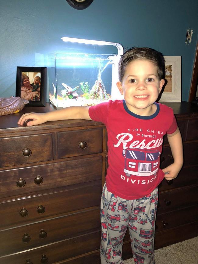 Mang cá vàng cưng lên giường ngủ cùng, bé trai 4 tuổi băn khoăn không hiểu tại sao nó chết - Ảnh 4.