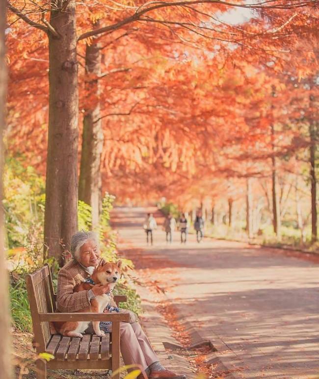Bộ ảnh đầy cảm xúc của cụ bà Nhật Bản và chú cún con: Khi về già, chỉ cần một người đồng hành đáng yêu thế này thôi! - Ảnh 7.
