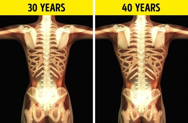 Cơ thể bị lão hóa như thế nào sau tuổi 30? Và những cách đẩy lùi lão hóa chúng ta nên làm - Ảnh 2.