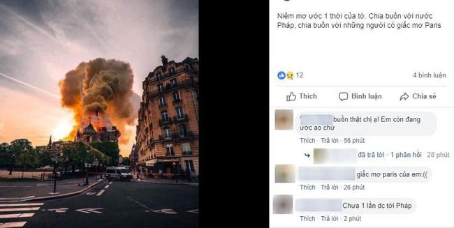 Dân mạng Việt thảng thốt, giăng status xót xa trước vụ cháy Nhà thờ Đức Bà Paris - Ảnh 8.