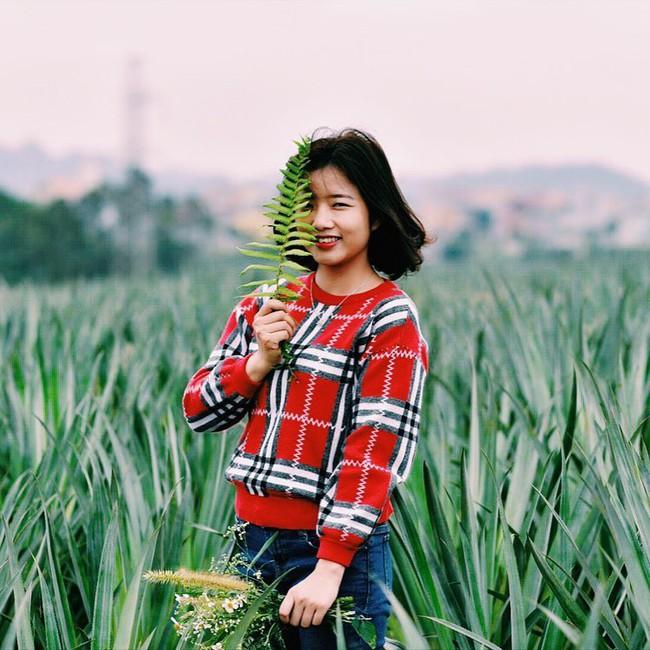 Đồi dứa xanh không xa Hà Nội thích hợp cho nhiều gia đình đi du lịch dịp lễ tới: Nhiều góc sống ảo, dứa ngọt lịm tim - Ảnh 8.