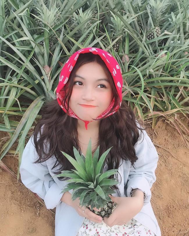 Đồi dứa xanh không xa Hà Nội thích hợp cho nhiều gia đình đi du lịch dịp lễ tới: Nhiều góc sống ảo, dứa ngọt lịm tim - Ảnh 7.