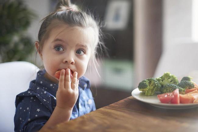 Trẻ biếng ăn, kén ăn sẽ không còn là nỗi lo của cha mẹ chỉ với 6 mẹo được chuyên gia khuyến nghị sau đây - Ảnh 2.