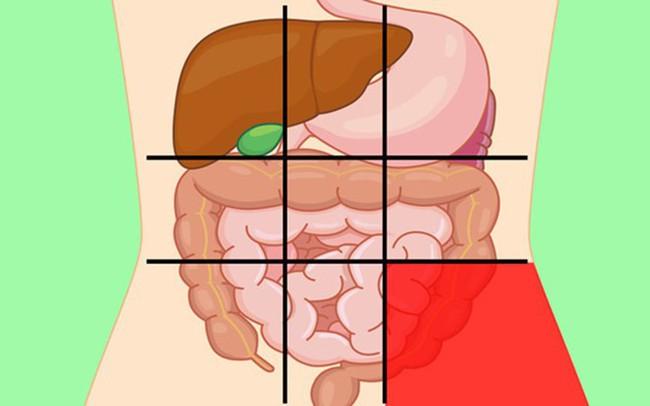 GS tiêu hóa chia sẻ: 7 vị trí đau bụng ai cũng cần biết để nhận diện mối nguy hiểm - Ảnh 1.
