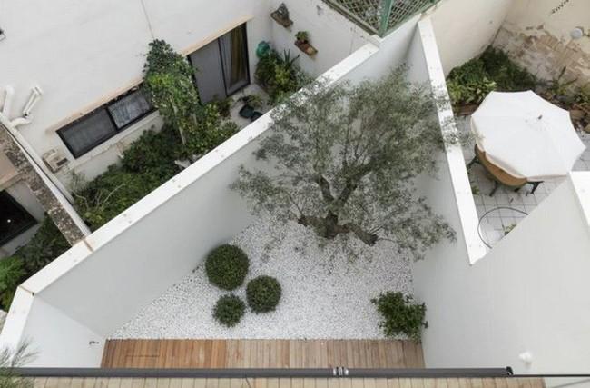 Ngắm kiến trúc nhà phố độc đáo với không gian hiện đại, có phòng tập thể dục, chiếu phim và hồ bơi trong suốt trên nóc nhà - Ảnh 3.