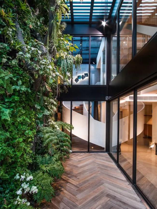 Cặp vợ chồng về hưu chọn cách dưỡng già bằng việc cải tạo không gian 300m² thành khu vườn ngập tràn thiên nhiên - Ảnh 13.