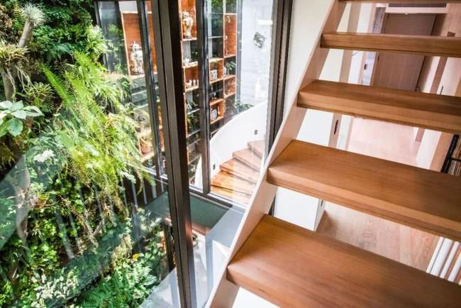 Cặp vợ chồng về hưu chọn cách dưỡng già bằng việc cải tạo không gian 300m² thành khu vườn ngập tràn thiên nhiên - Ảnh 14.