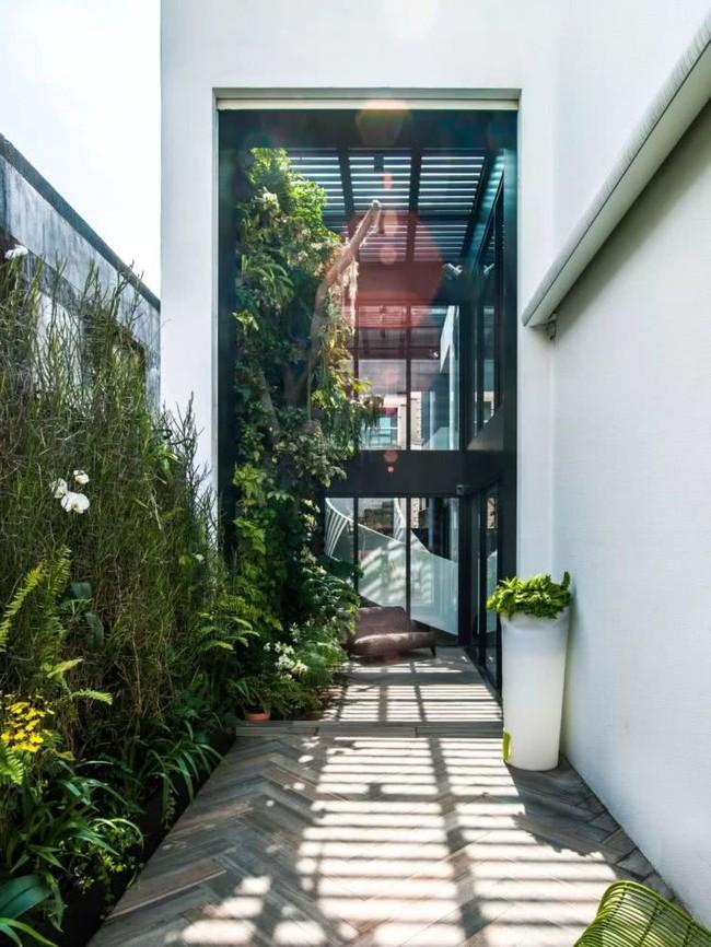 Cặp vợ chồng về hưu chọn cách dưỡng già bằng việc cải tạo không gian 300m² thành khu vườn ngập tràn thiên nhiên - Ảnh 3.
