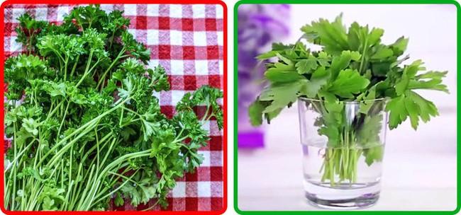Thật không thể tin nổi chẳng cần tủ lạnh vẫn có thể giữ rau củ quả tươi roi rói nhờ loạt bí kíp đặc biệt  - Ảnh 4.