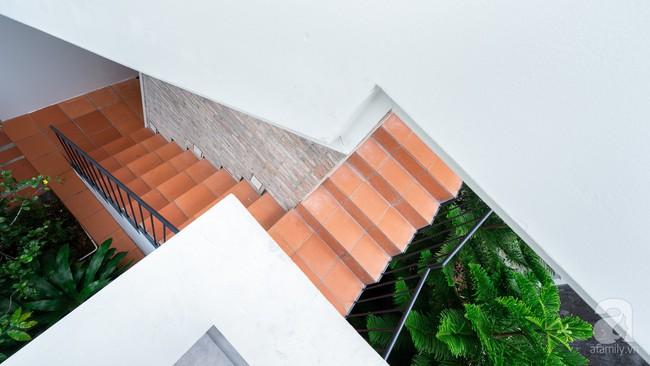 Ngôi nhà có tuổi lột xác thành nhà vườn xanh mát của cặp vợ chồng về hưu ở Vĩnh Long - Ảnh 19.