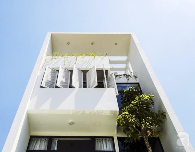 Ngôi nhà ống xanh ngát xanh bất chấp sự chật hẹp giữa phố phường Sài Gòn - Ảnh 3.