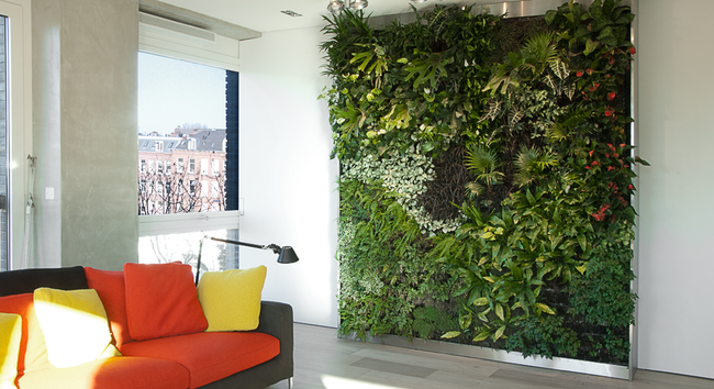 Nhà phố chật hẹp gần hơn với thiên nhiên nhờ những mảng tường xanh hiền hòa - Ảnh 3.