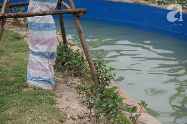 Mới mở cửa khai trương hơn 1 ngày, công viên nước Thanh Hà đã đục ngầu như ao, rác nổi khắp bể bơi - Ảnh 8.