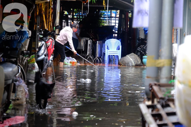 Nước ngập đến bàn thờ ông thần Tài sau mưa lớn ở TP.HCM: Người bì bõm tát nước, người bán buôn ế ẩm - Ảnh 10.
