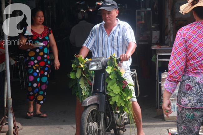 Lá xông Miền tay vượt trăm cây số lên Sài Gòn, bánh ú tro