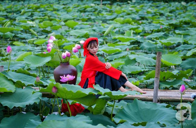 Một mùa sen nữa lại về, Hà Nội lại nhuộm hồng cánh hoa, tươi như thanh xuân của gái chưa chồng - Ảnh 10.