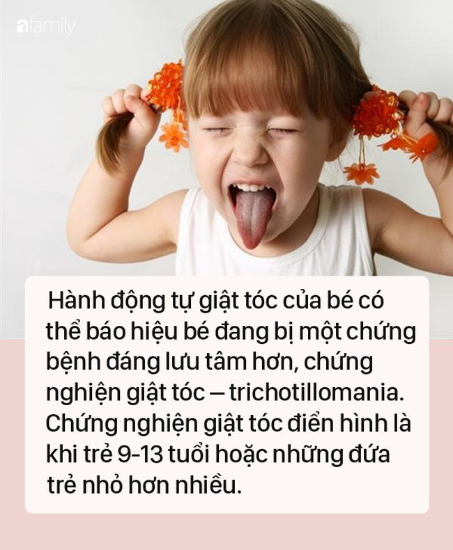 tre-dut-toc-4