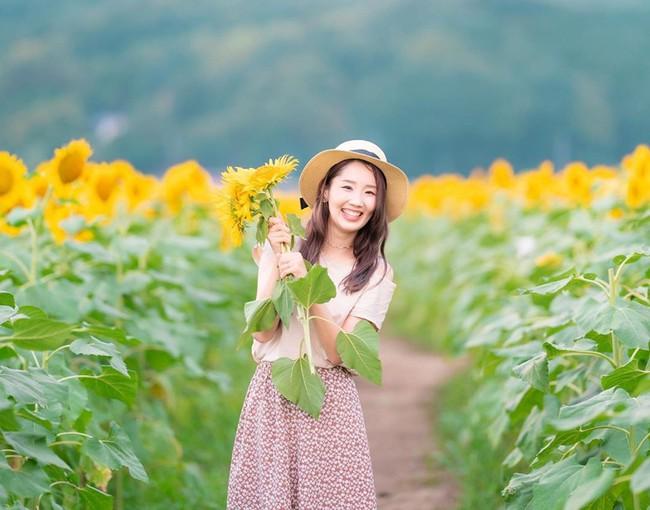 Cánh đồng hoa hướng dương triệu bông đẹp như bức tranh khổng lồ vào mùa thu ở Nhật Bản - Ảnh 5.
