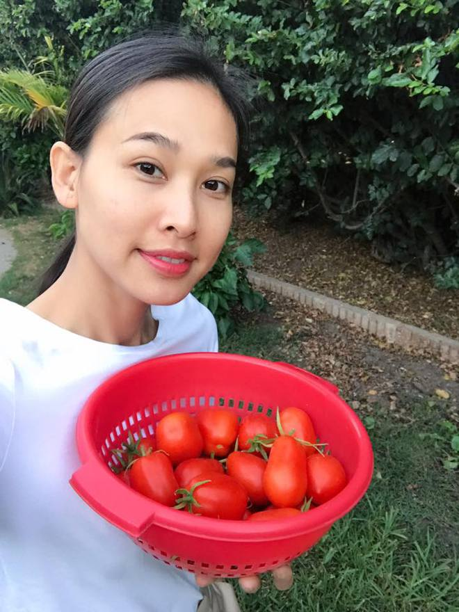 Cận cảnh khu vườn có nhiều loại rau củ Việt của hoa hậu Dương Mỹ Linh trên đất Mỹ - Ảnh 2.