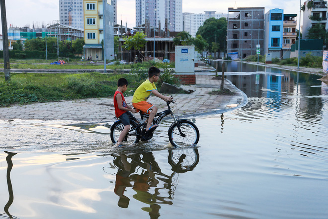 Hà Nội: Ngập úng quanh năm, người dân thả vịt ngay trên đường khu đô thị - Ảnh 10.